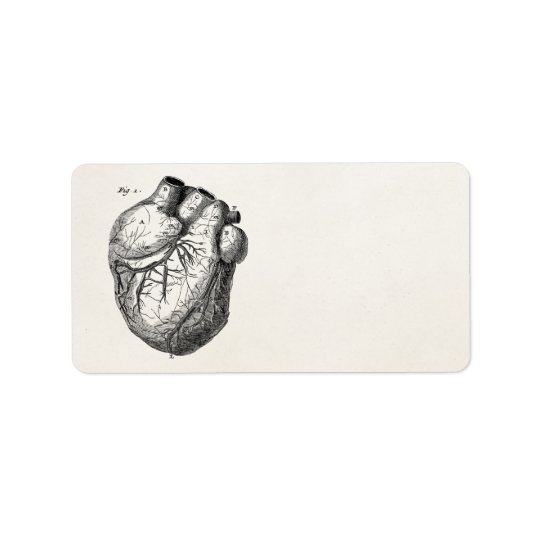 Vintage 1800s Heart Retro Cardiac Anatomy Hearts Address Label