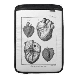 Vintage 1800s Heart Retro Cardiac Anatomy Hearts Sleeve For MacBook Air