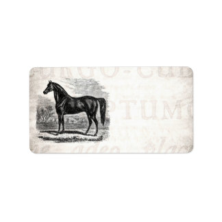 Vintage 1800s Horse - Morgan Equestrian Template Address Label