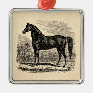 Vintage 1800s Horse - Morgan Equestrian Template Metal Ornament