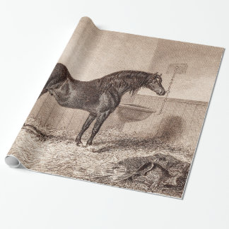 Vintage 1800s Horse Norfolk Cob Hackney Retro Wrapping Paper