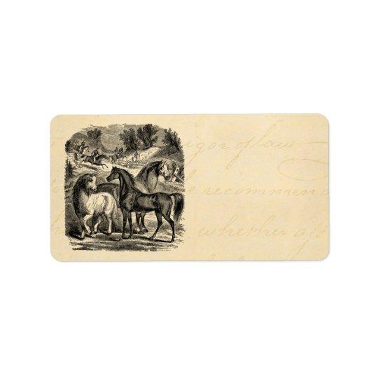 Vintage 1800s Horses Arabian Cart Cossack Horse Address Label