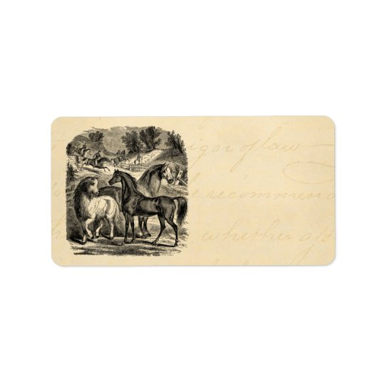 Vintage 1800s Horses Arabian Cart Cossack Horse Label
