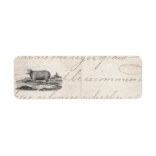 Vintage 1800s Merino Sheep Ewe Lamb Template Return Address Label