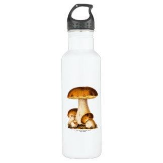 Vintage 1800s Mushroom Edible Mushrooms Template 710 Ml Water Bottle