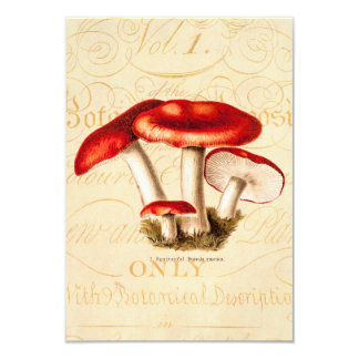 vintage 1800s Mushroom Red Mushrooms Template 9 Cm X 13 Cm Invitation Card