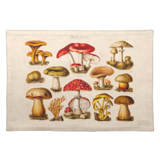 Vintage 1800s Mushroom Variety Red Mushrooms Placemat