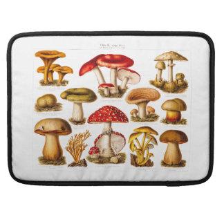 Vintage 1800s Mushroom Variety Red Mushrooms Sleeve For MacBook Pro