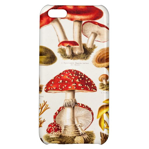 Vintage 1800s Mushroom Variety Template Case For iPhone 5C