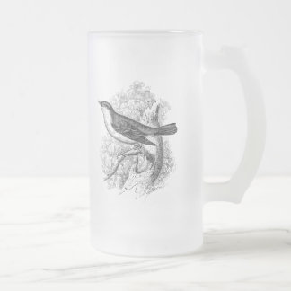 Vintage 1800s Nightingale Bird Illustration Birds Frosted Glass Beer Mug