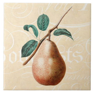 Vintage 1800s Pear Fruit Branch w Leaves - Pears Large Square Tile