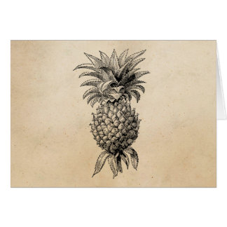 Vintage 1800s Pineapple Illustration Pineapples Card