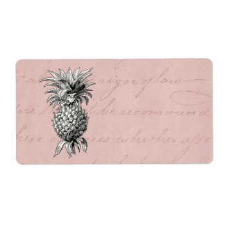 Vintage 1800s Pineapple Illustration Pink