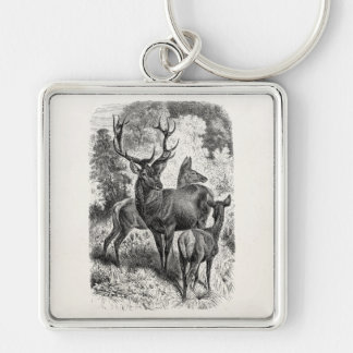 Vintage 1800s Red Deer Illustration Stag Doe Fawn Silver-Colored Square Key Ring