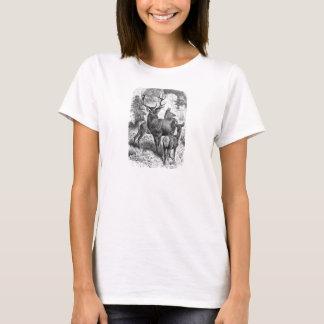 Vintage 1800s Red Deer Illustration Stag Doe Fawn T-Shirt