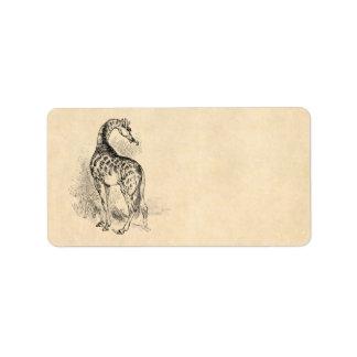 Vintage 1800s Retro GiraffeIllustration Parchment Address Label