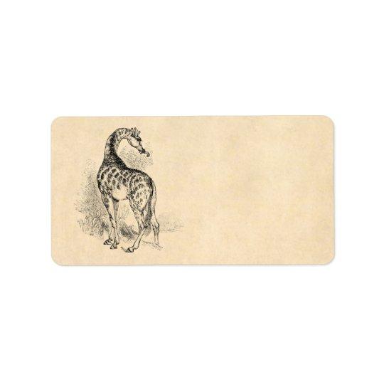 Vintage 1800s Retro GiraffeIllustration Parchment Label