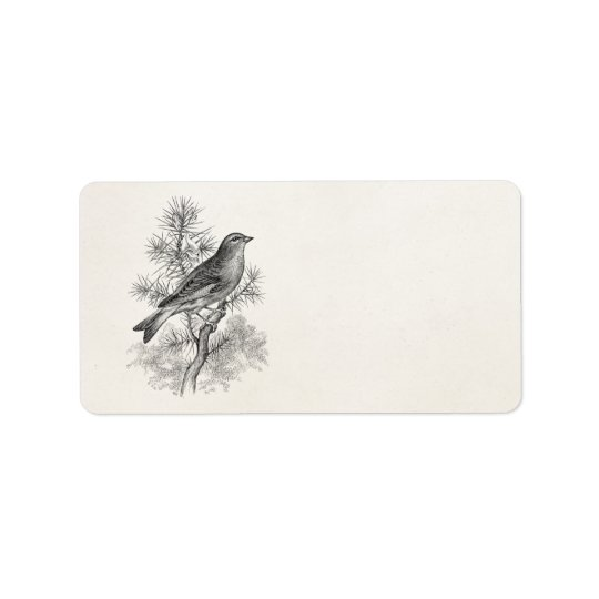 Vintage 1800s Rose Linnet Song Bird Finch Birds Label