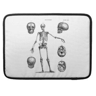 Vintage 1800s Skeleton Antique Anatomy Skeletons Sleeve For MacBooks