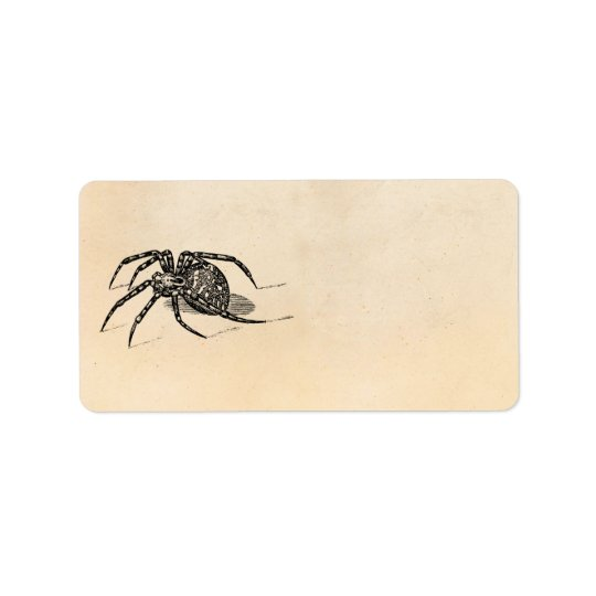 Vintage 1800s Spider Illustration Spiders Template Address Label