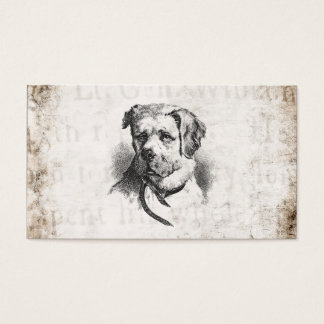 Vintage 1800s St. Bernard Dog - St Bernards Dogs Business Card