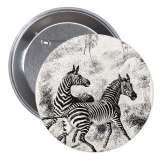 Vintage 1800s Zebras Retro Old Zebras Illustration 7.5 Cm Round Badge