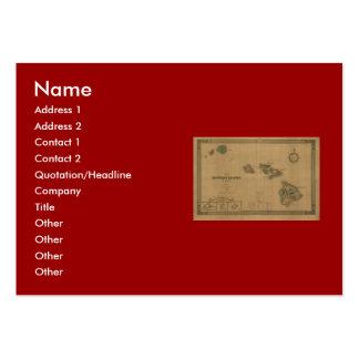 Vintage 1876 Hawaii Map -  Hawaiian Islands Business Cards