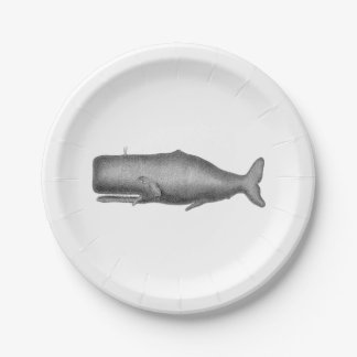 Vintage 19th Century Whale Drawing Paper Plate