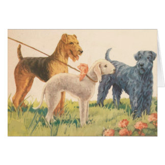 Vintage - 3 Terrier Dog Breeds (Blank Inside), Card
