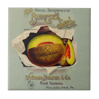 Vintage Advertising Victorian Cantaloupe Fruit Ceramic Tile