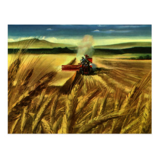Vintage Agricultural Farm Business, Wheat Farming Postcard