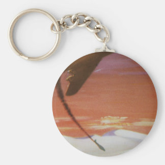 Vintage Aircraft Key Chain