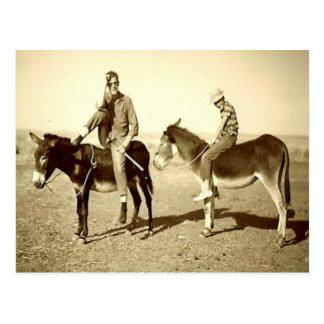 Vintage Algeria Explorations on a donkey Postcard