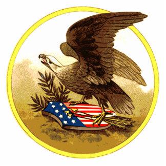 Vintage American Bald Eagle Standing Photo Sculpture