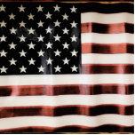 Vintage American Flag Photo Sculpture Badge