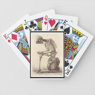 Vintage Anatomical Skeleton Playing Card Deck