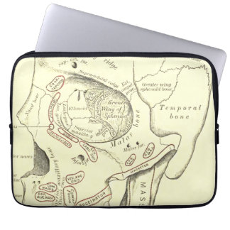Vintage Anatomy Anterolateral region of the skull Laptop Sleeve