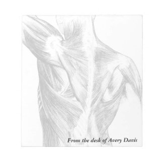 Vintage Anatomy | Back Muscles  (circa 1852) | B/W Notepad