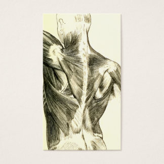 Vintage Anatomy | Back Muscles (circa 1852) Business Card