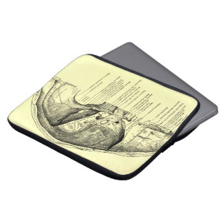 Vintage Anatomy | Base of the skull Inner surface Laptop Computer Sleeves