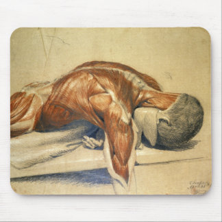 Vintage Anatomy Charles Landseer A Dissected Body Mouse Pad