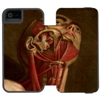 Vintage Anatomy | Head and Neck Incipio Watson™ iPhone 5 Wallet Case