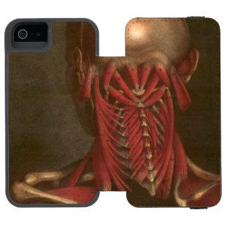 Vintage Anatomy | Neck and Shoulders Incipio Watson™ iPhone 5 Wallet Case