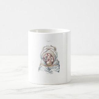 Vintage Anatomy of a Human Infant in Womb Coffee Mug