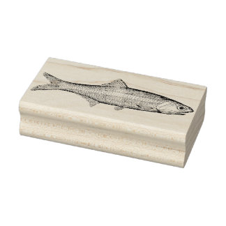 Vintage Anchovy Fish Rubber Art Stamp