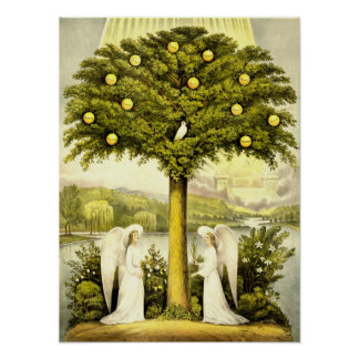 Vintage Angels & Dove in Lemon Tree Poster