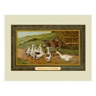 Vintage animal illustration Consulting the Oracle Postcard