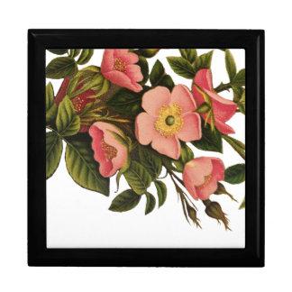 Vintage Antique Art Rose Flower Art Illustration Gift Box