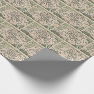 Vintage Antique Paris Street Map Wrapping Paper
