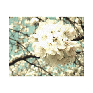 Vintage apple blossom stretched canvas prints